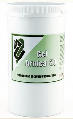 Gel Arnica 30 1 Kg UMBPU00855
